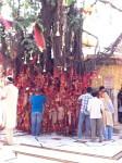 Swamiji in Chintapurni Mandir, India-  May 2011