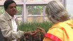 A Tour of the Herbal Garden