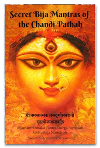 Secret Bija Mantra of Chandi Path Book Cover