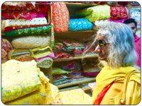 2018 Travelogue: Shree Maa's Pilgrimage to India