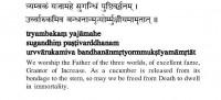 Mahamrtyunjaya Mantra [Prayer for Global Peace]