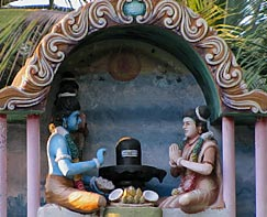 Shiva and Shakti worship a Shiva lingam together