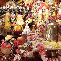 Watch Now!  Shiva Puja and Advanced Yajna Class 2014 – Video and Photo Gallery