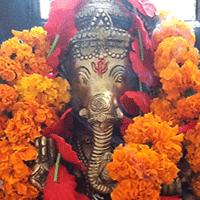 Travelogue 2014:  Shree Maa and Swamiji's Tour of India, Part I