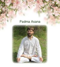 Application of Hatha Yoga to Sadhana